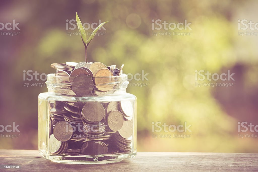 plant growing out of coins stock photo