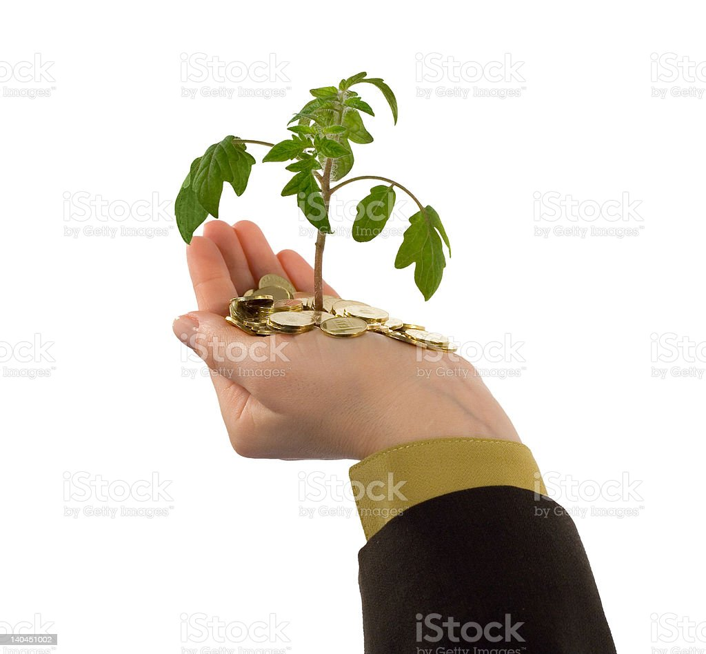 Plant in hand and coins royalty-free stock photo