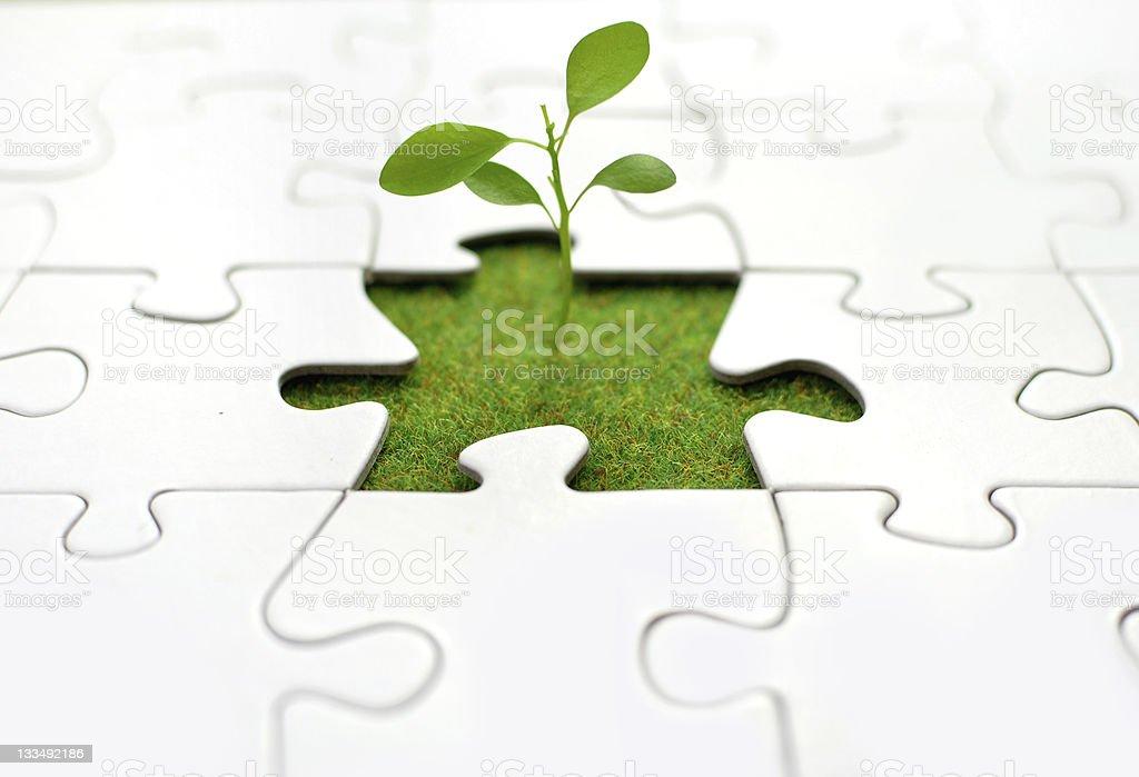 Plant jigsaw stock photo
