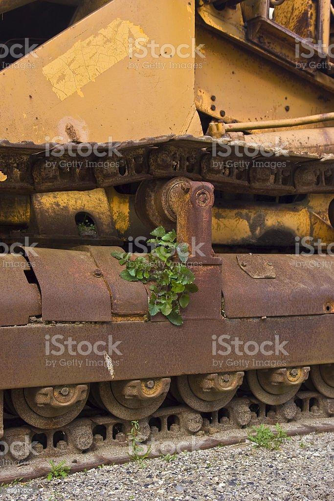 Plant on bulldozer royalty-free stock photo