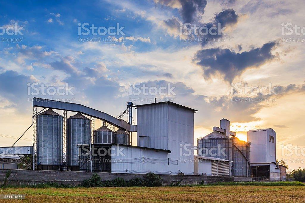 Plant Rice mill stock photo