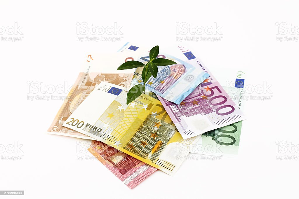Plant Sprouting From Euro Banknotes stock photo