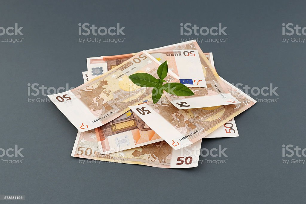 Plant Sprouting From Fifty Euro Banknotes stock photo