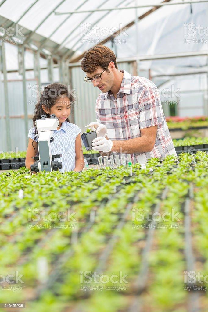 Plant studies with hispanic girl student and caucasian teacher stock photo