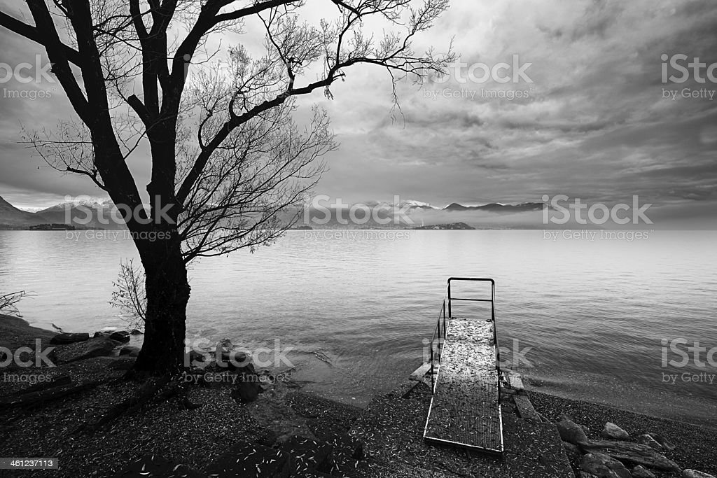 Plant with small pier. Black and White royalty-free stock photo