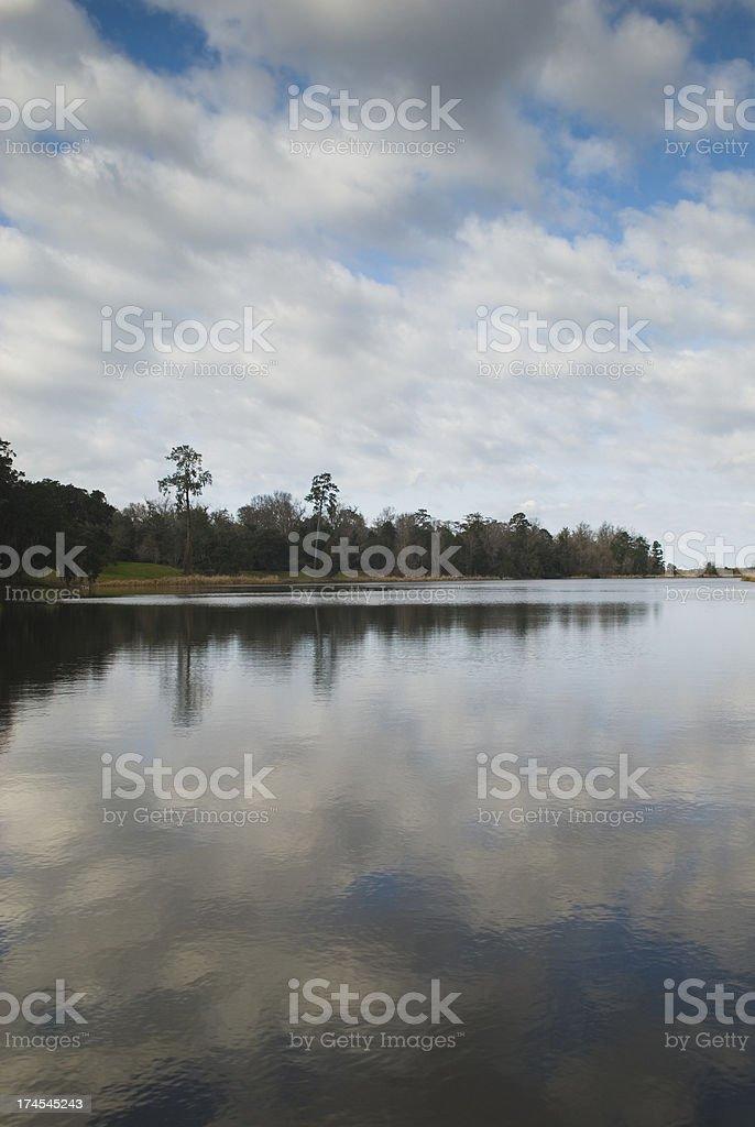 'Plantation scenery (Middleton Place, SC) - V' stock photo