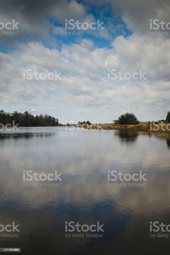 Plantation scenery (Middleton Place, SC) - VI stock photo