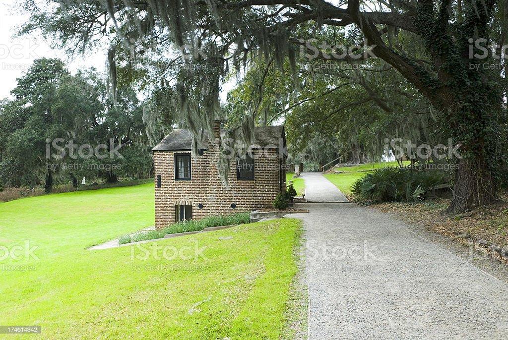 'Plantation scenery (Middleton Place, SC) - VIII' stock photo