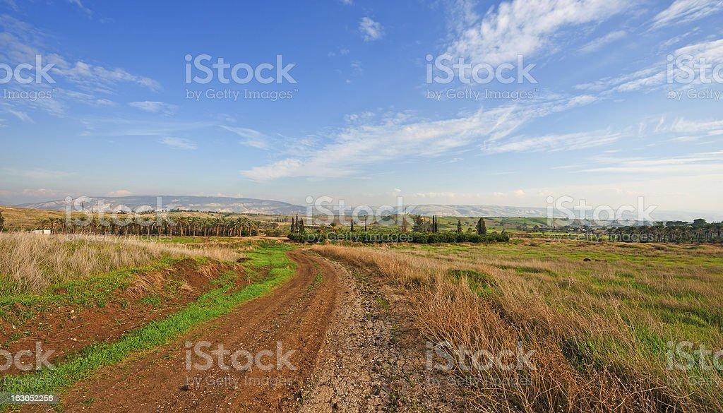 Plantations royalty-free stock photo