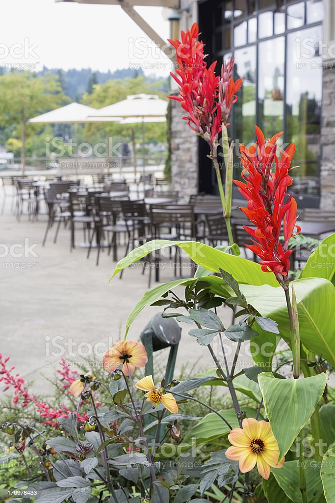 Planter Flowers by Restaurant Outdoor Seating royalty-free stock photo