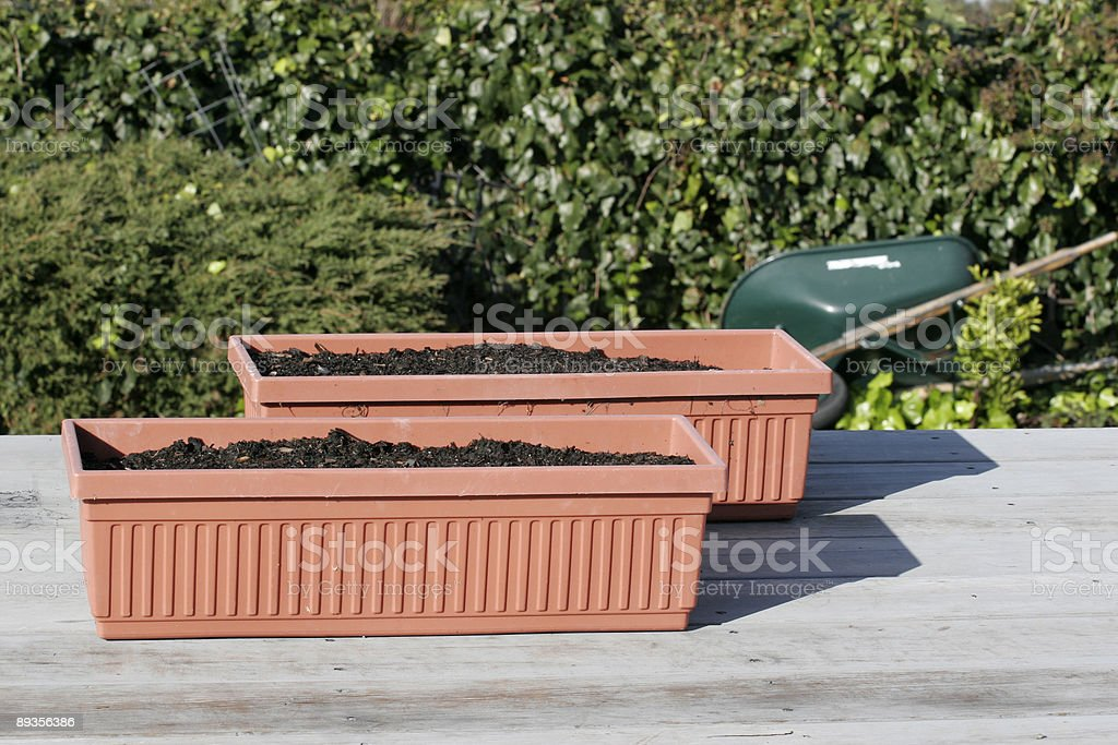 Planters and Ivy royalty-free stock photo