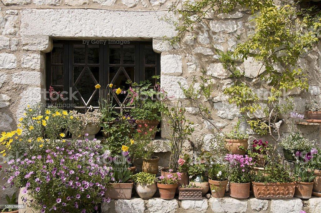 Planters stock photo