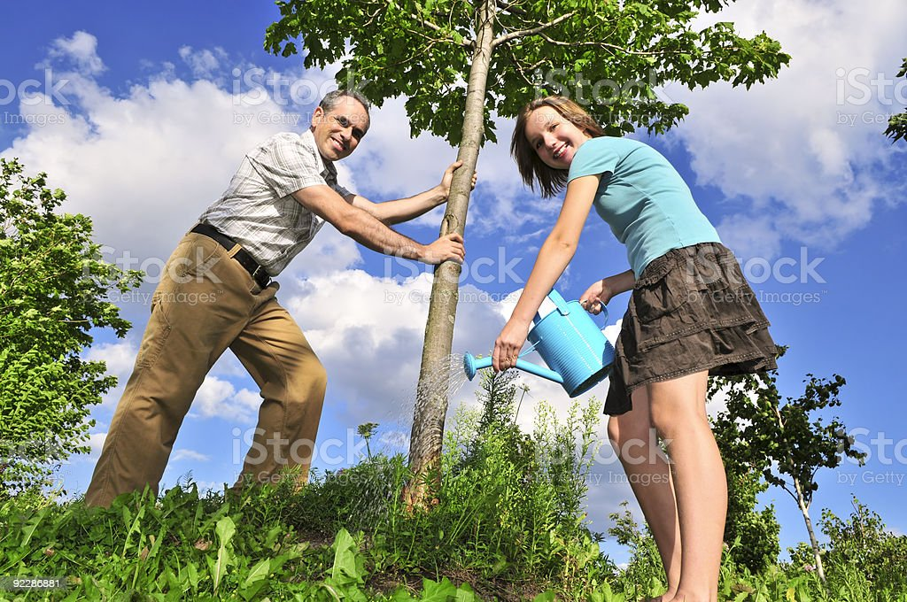 Planting a tree royalty-free stock photo