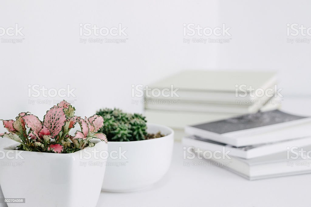 plants and books on desk stock photo