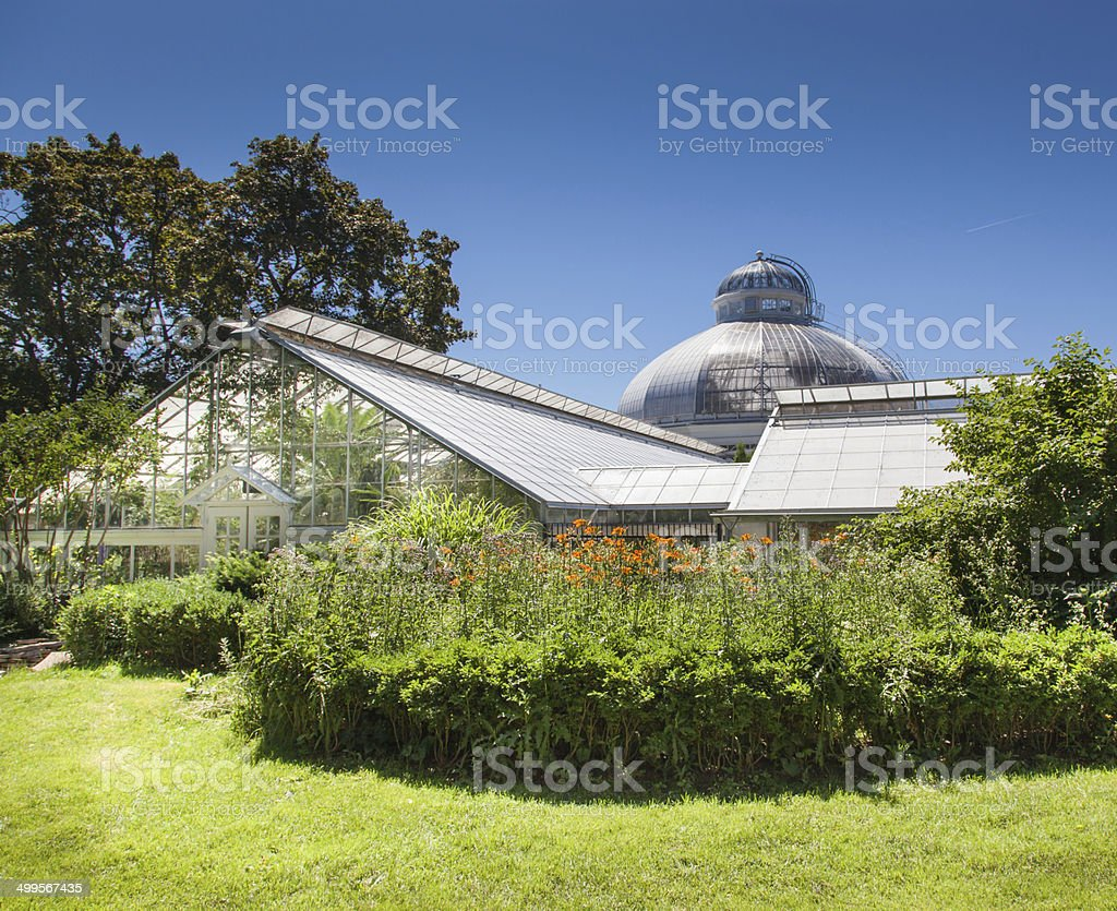 Plants in a greenhouse, Allan Gardens, Toronto, Ontario, Canada stock photo