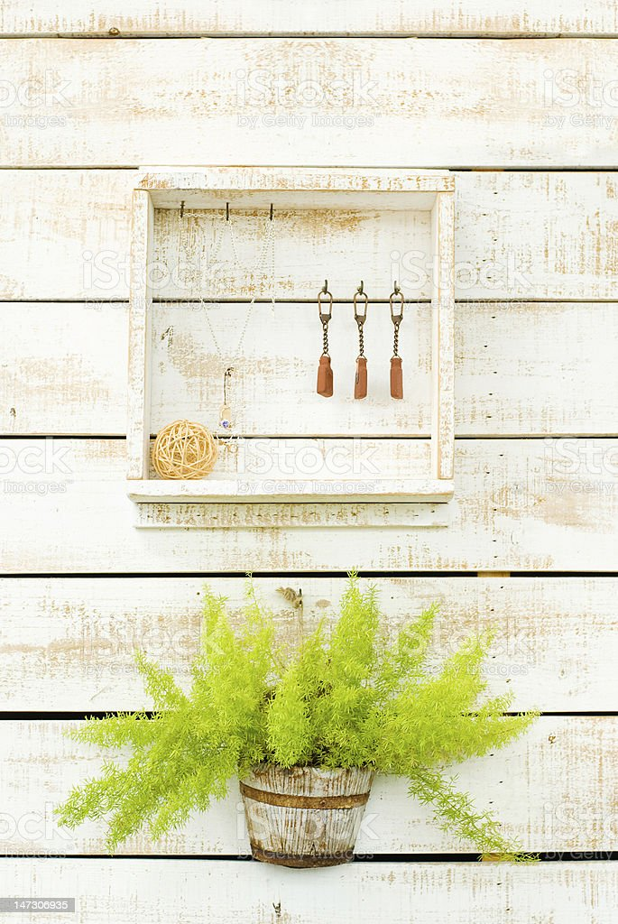 Plants on white rough wooden wall as Decoration stock photo