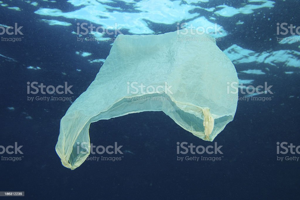 Plastic bag floating in the ocean stock photo