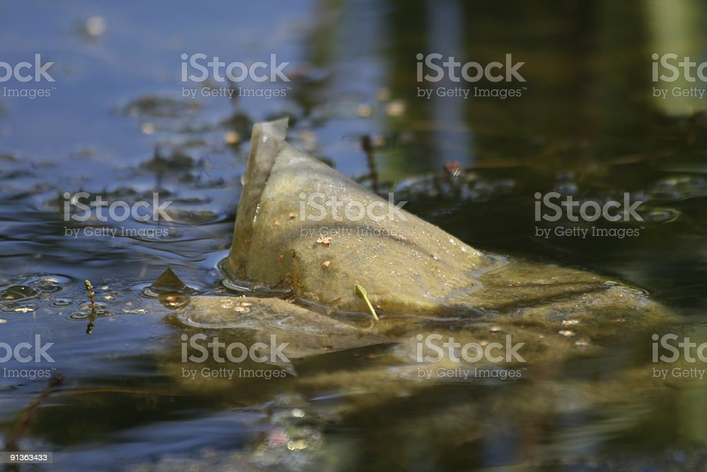 Plastic Bag in a Pond stock photo