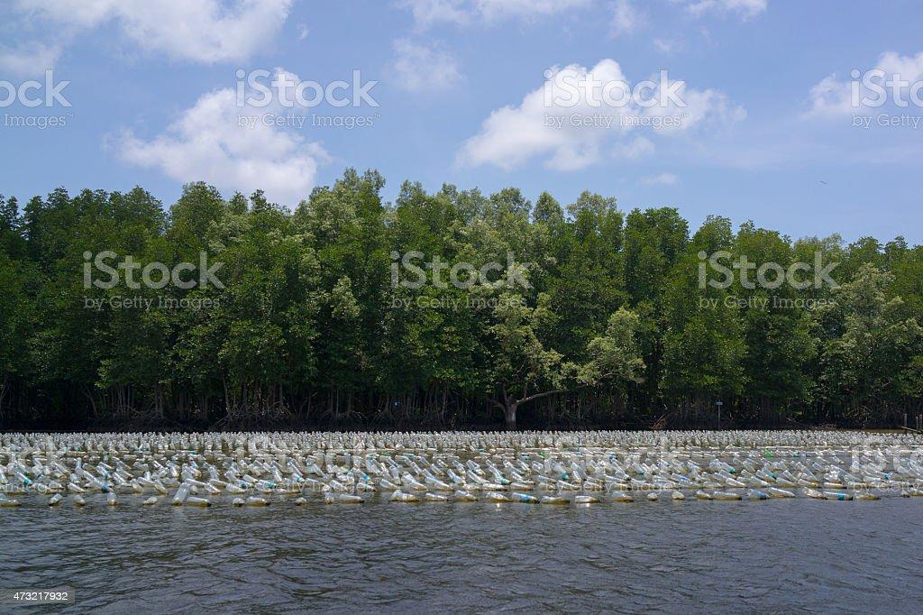 Bouteilles en plastique flotter sur la rivière près de la forêt de mangrove photo libre de droits