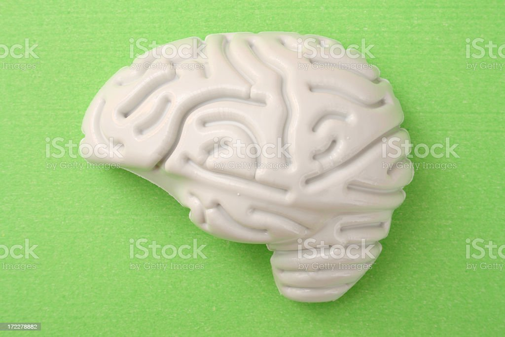 Plastic brain stock photo