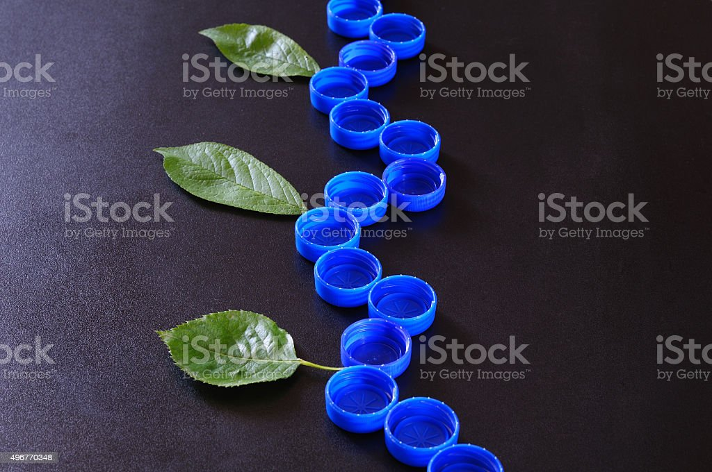 plastic branch, with real leaves stock photo