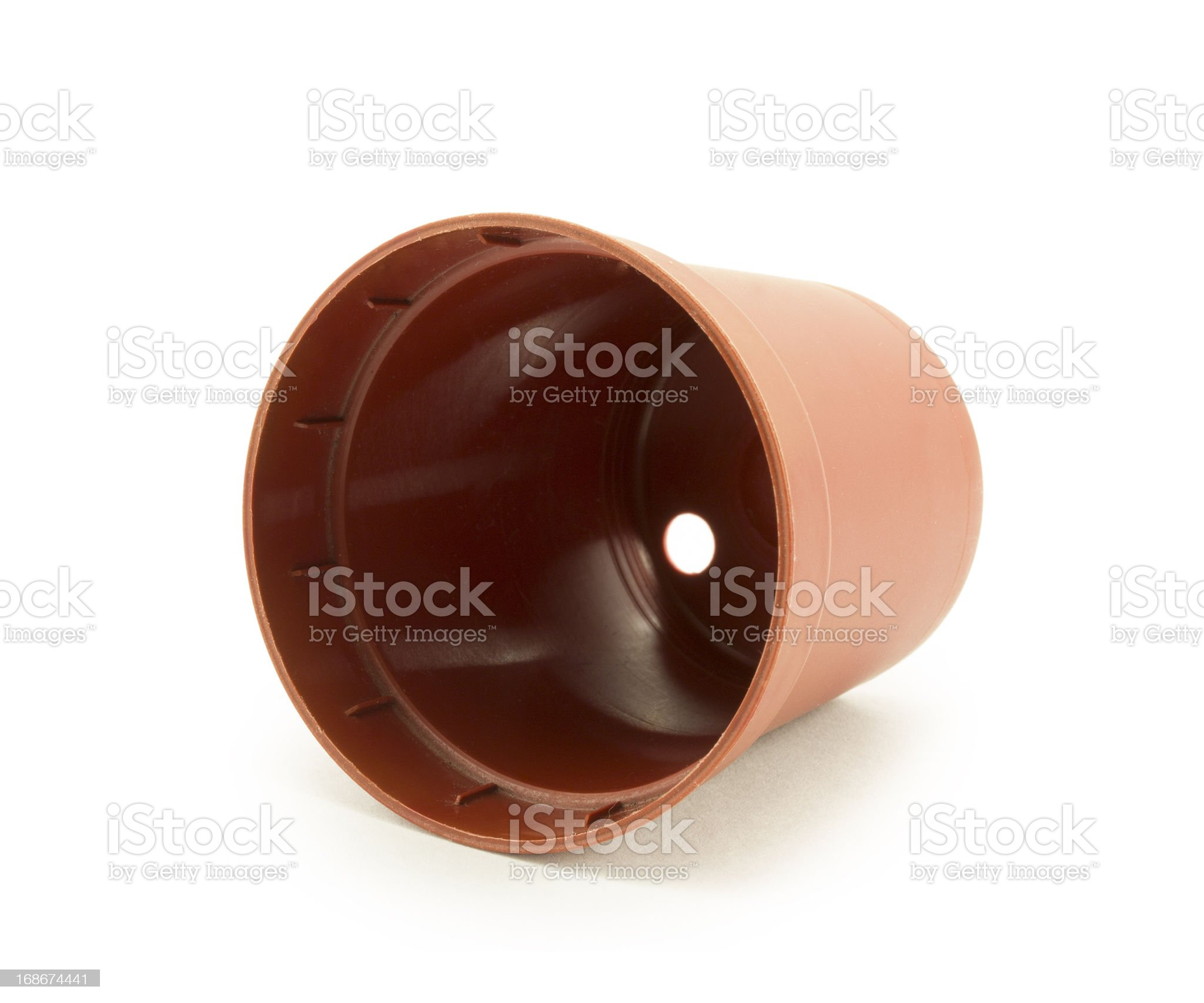 plastic disposable container flowerpot royalty-free stock photo