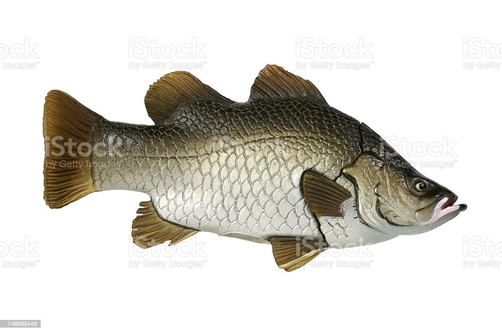 Plastic Fish royalty-free stock photo