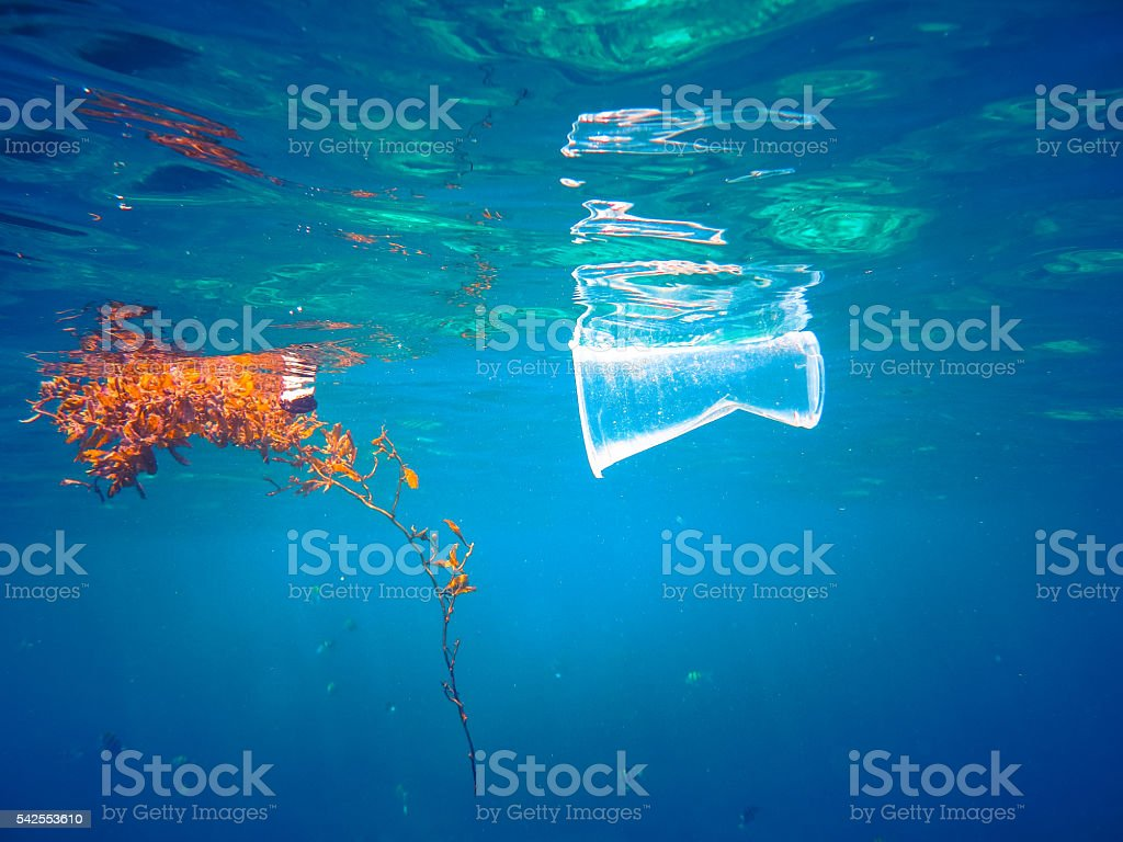 Plastic Floating in the Ocean stock photo