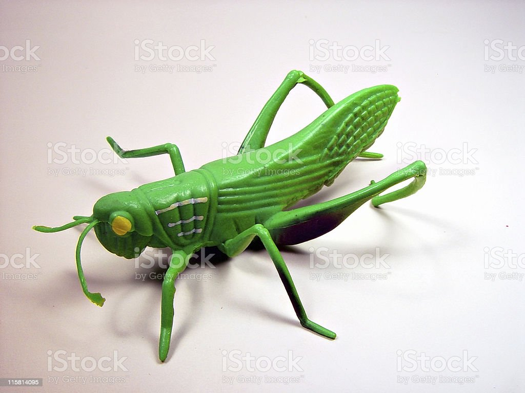 Plastic Grasshopper royalty-free stock photo