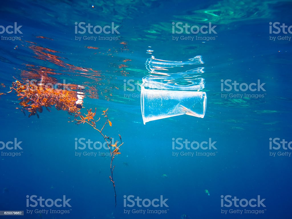 Plastic Ocean Pollution Floating Global Environmental Issue stock photo