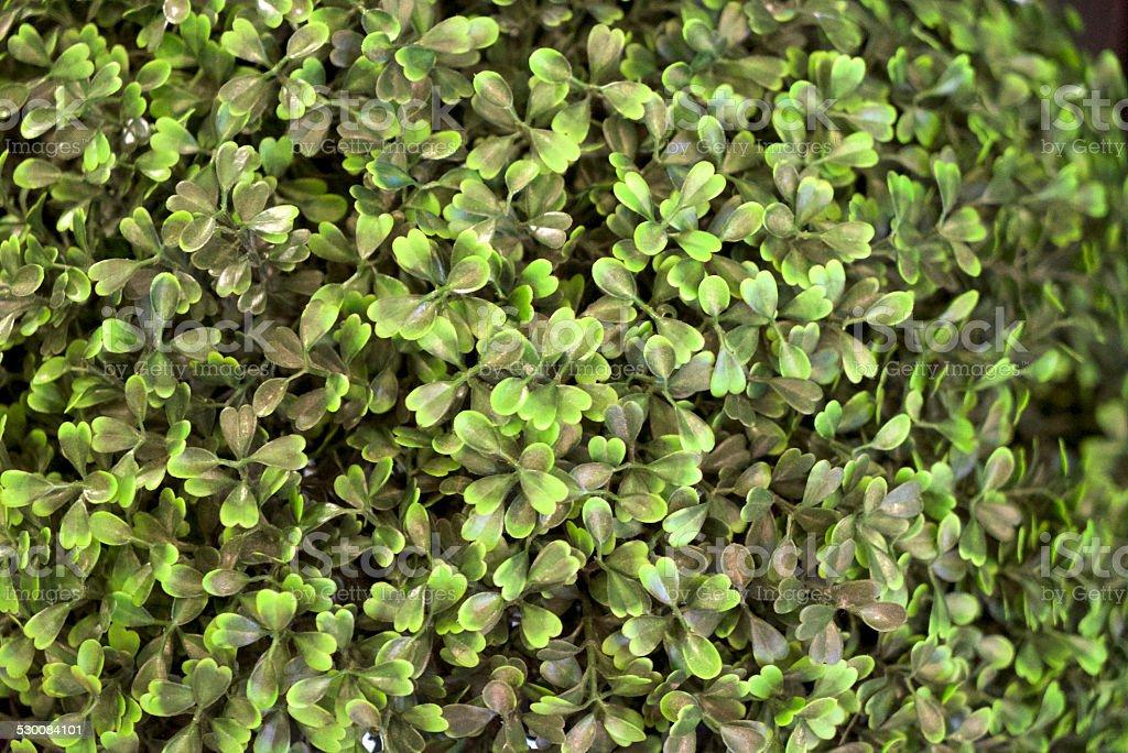 Plastic Plant stock photo