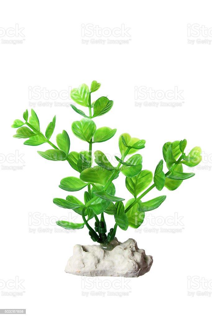 Plastic Seaweed stock photo