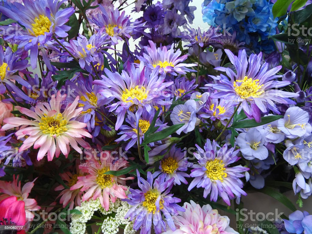 Plastic / silk purple, pink, blue daisies / artificial aster daisy flowers stock photo