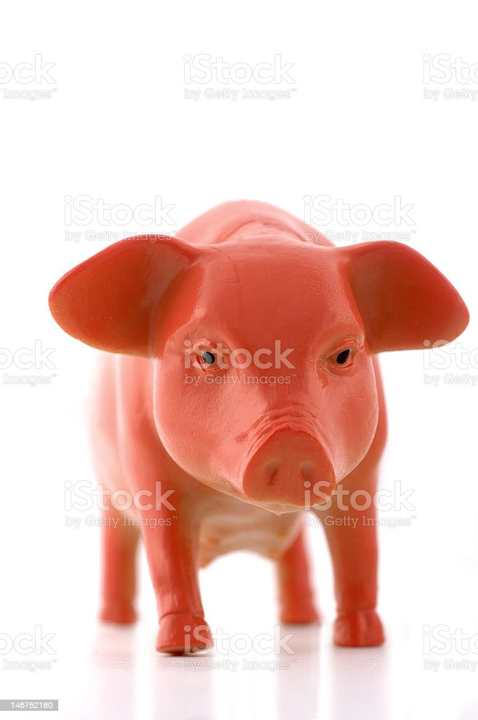 Plastic toy pig isolated royalty-free stock photo