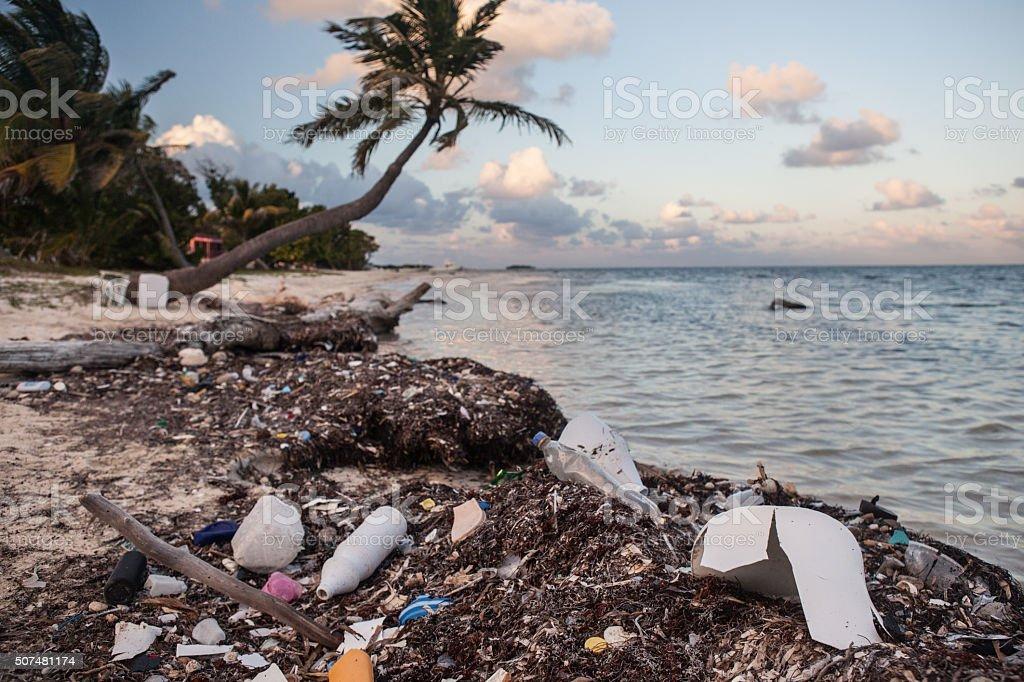 Plastic Trash on Caribbean Beach stock photo