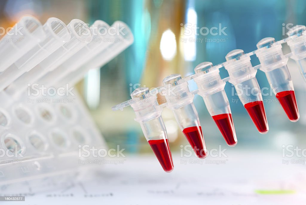 Plastic tubes prepared for amplification of DNA royalty-free stock photo