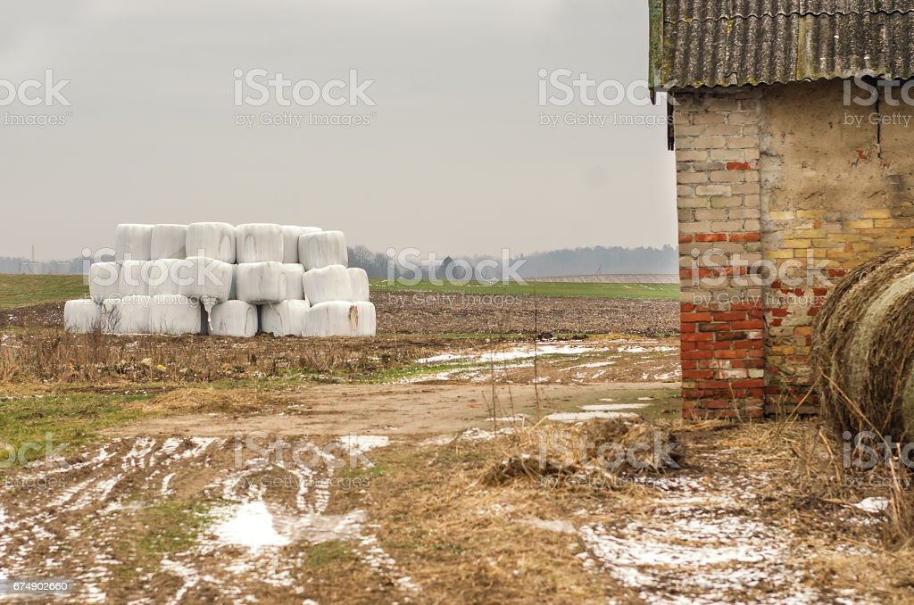 Plastic wrap cover for wheat cereal bales outdoor stock photo
