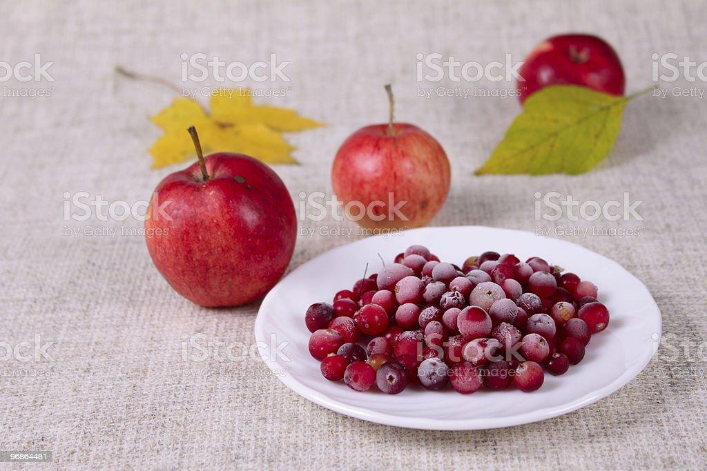 Płyta z cowberry usiane cukru zbiór zdjęć royalty-free