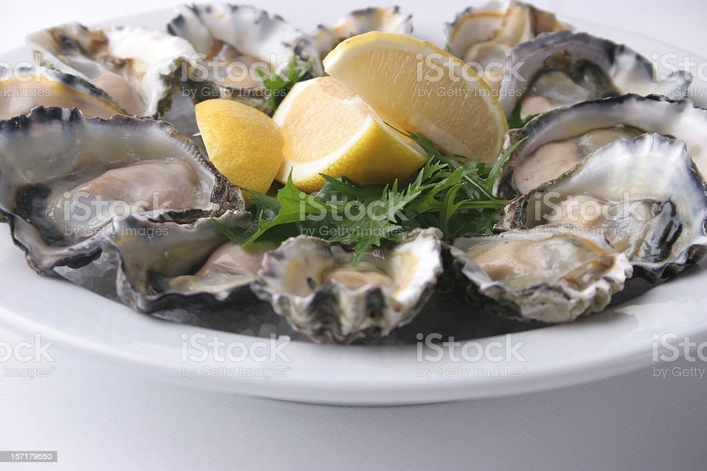 Plate of fresh oysters royalty-free stock photo