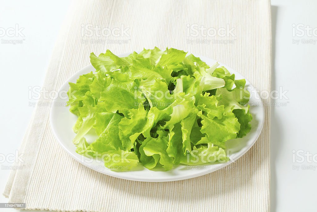 plate of lettuce royalty-free stock photo