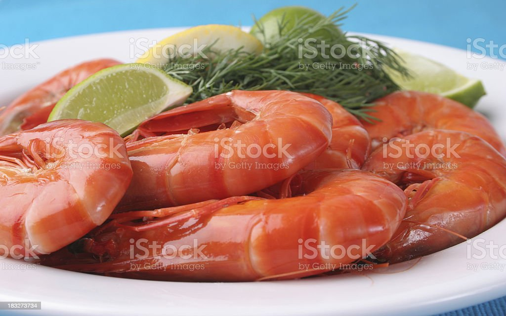 plate of prawns on blue royalty-free stock photo
