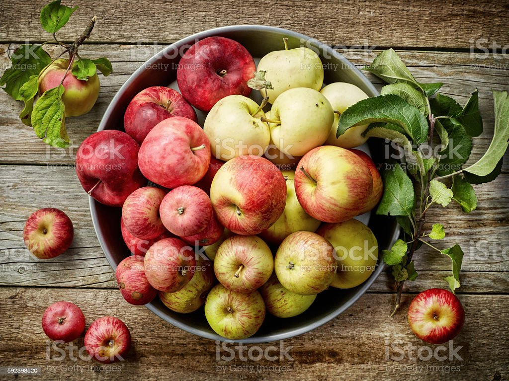 plate of various fresh apples stock photo