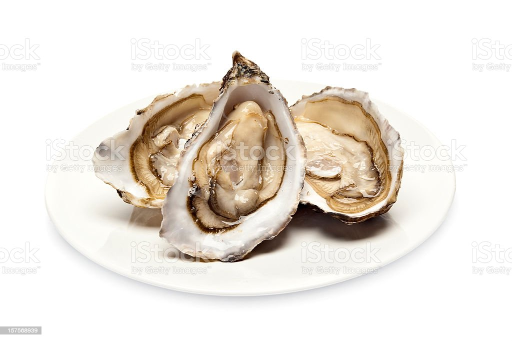 Plate serving of three fresh oysters in their shell stock photo