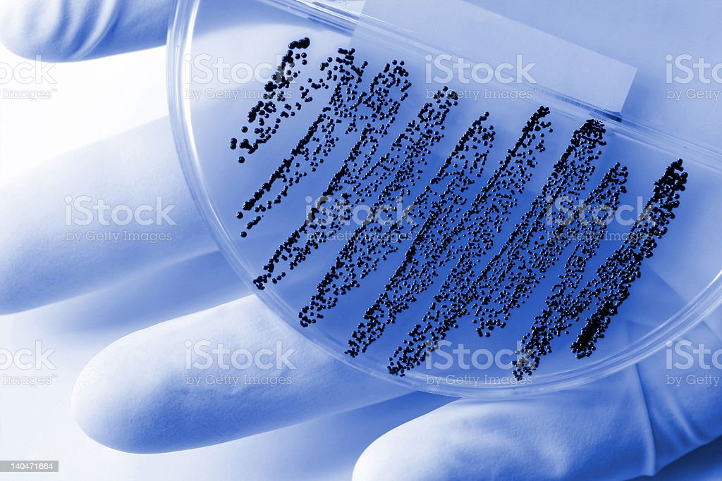A plate showing a dangerous microorganism royalty-free stock photo