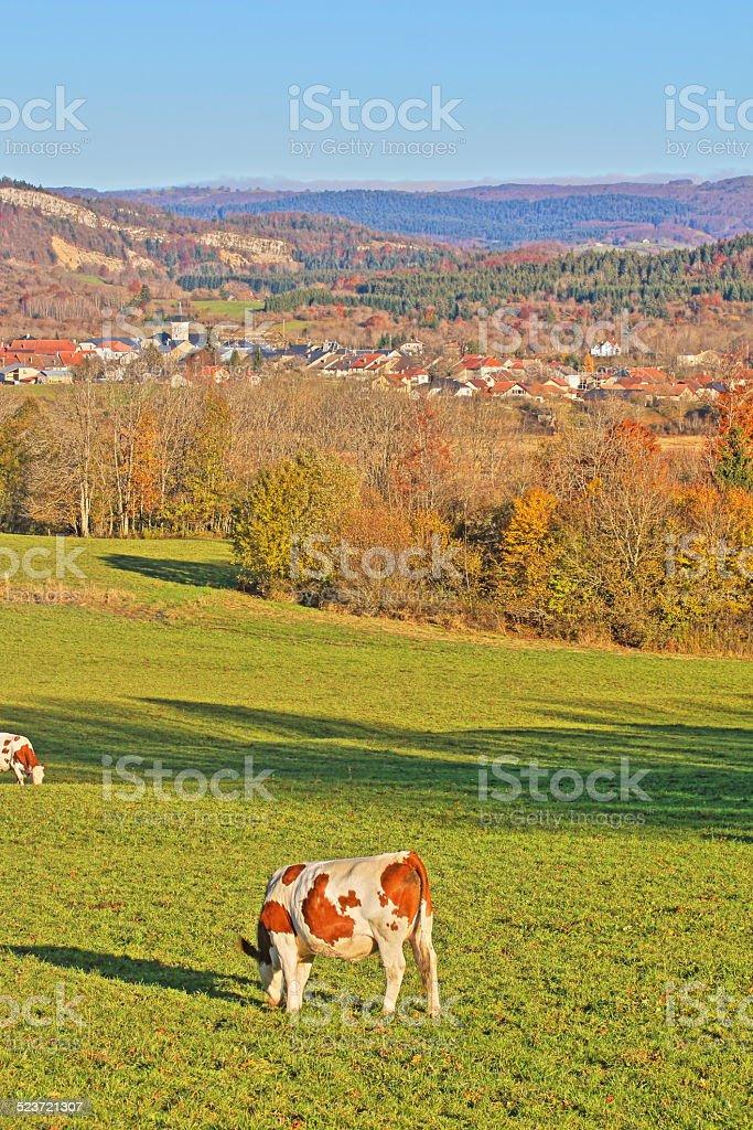 Plateau de Retord in Rhone-Alpes, France in autumn stock photo