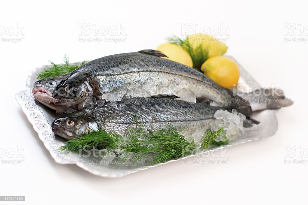 Plated Fresh Trout royalty-free stock photo