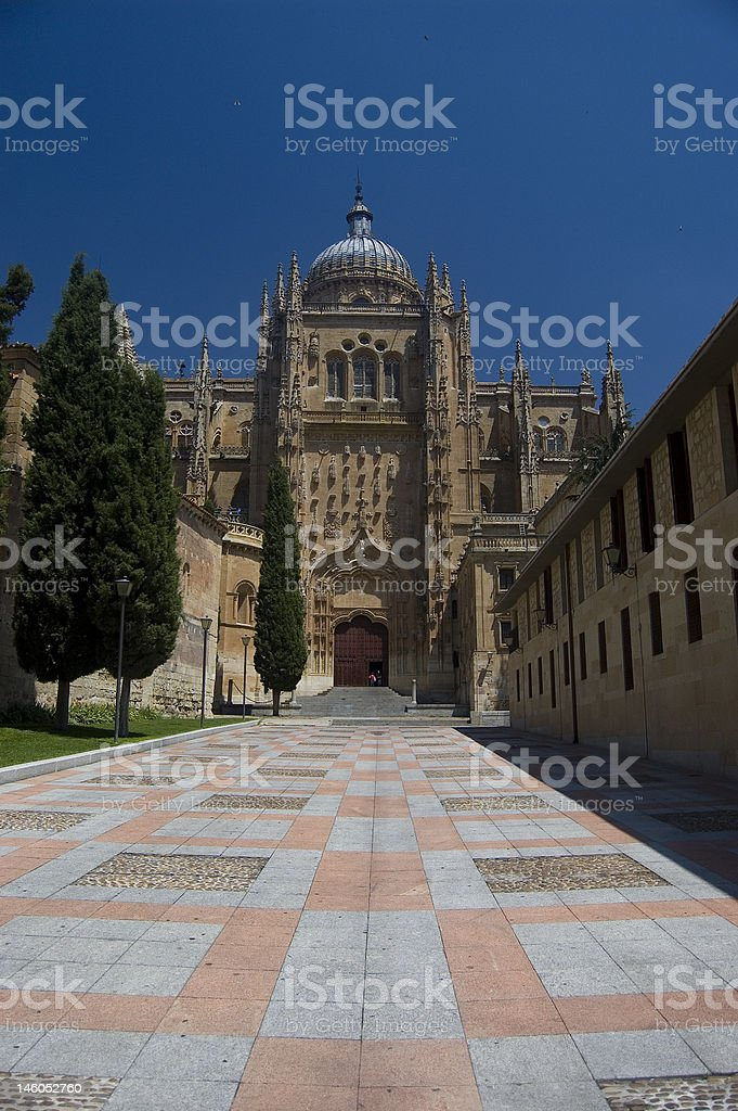 Plateresque facade of New Cathedral. Salamanca, Spain royalty-free stock photo