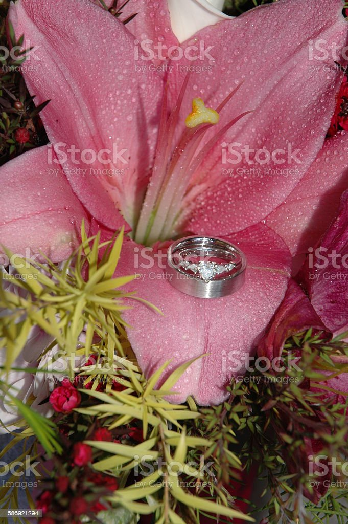 Platinum and diamond wedding ring set in a pink Lilly stock photo