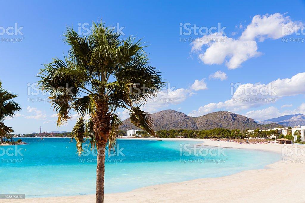 Platja de Alcudia beach in Mallorca Majorca stock photo