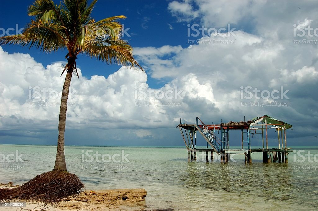 Playa de agua cristalina con cocotero y bugalow destruido stock photo